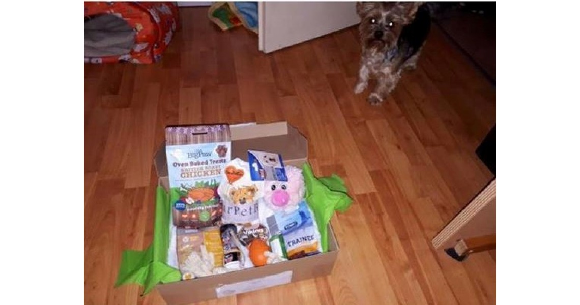 YourPetBox